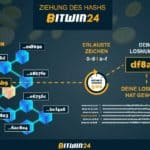 Bitwin24 | All you need to know about Bitwin24 Lottery