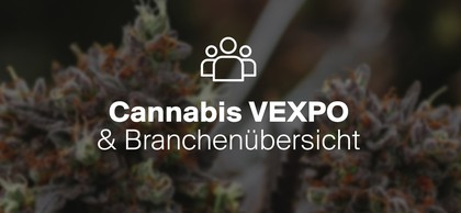Juicy Fields CANNABIS VEXPO & Industry Overview