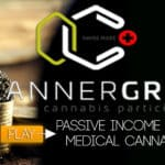 Cannergrow - Passive income with medical cannabis - Review